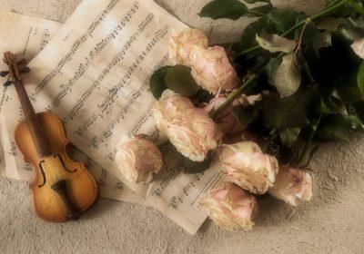 Concert de musique classique » Les plus belles sonates à trois»