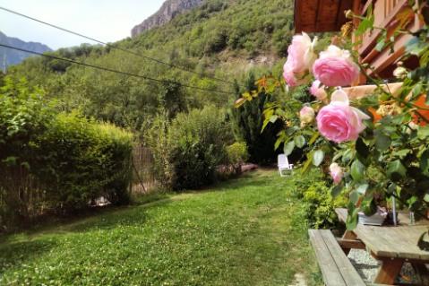 Les Roses de Jean