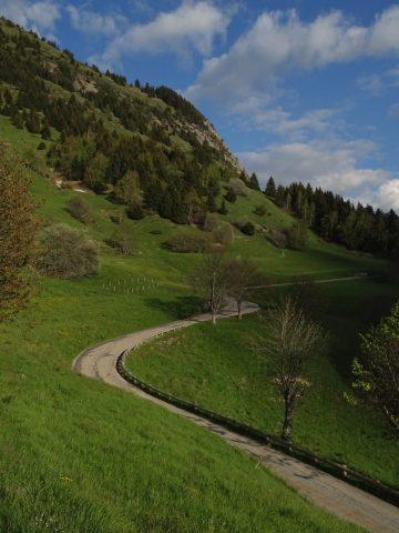 Rando trail – n°5 Bleu – La montée de l'Alpe