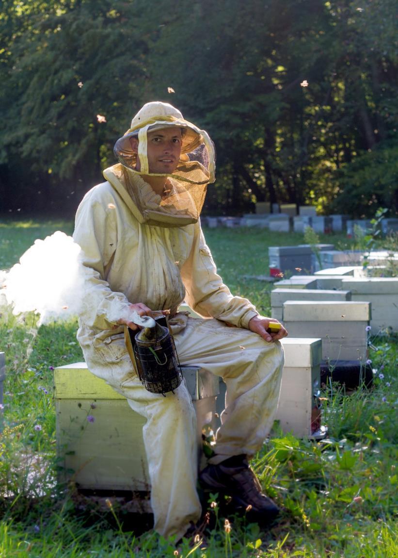 Un Ecrin de Miel – apiculteur (2)