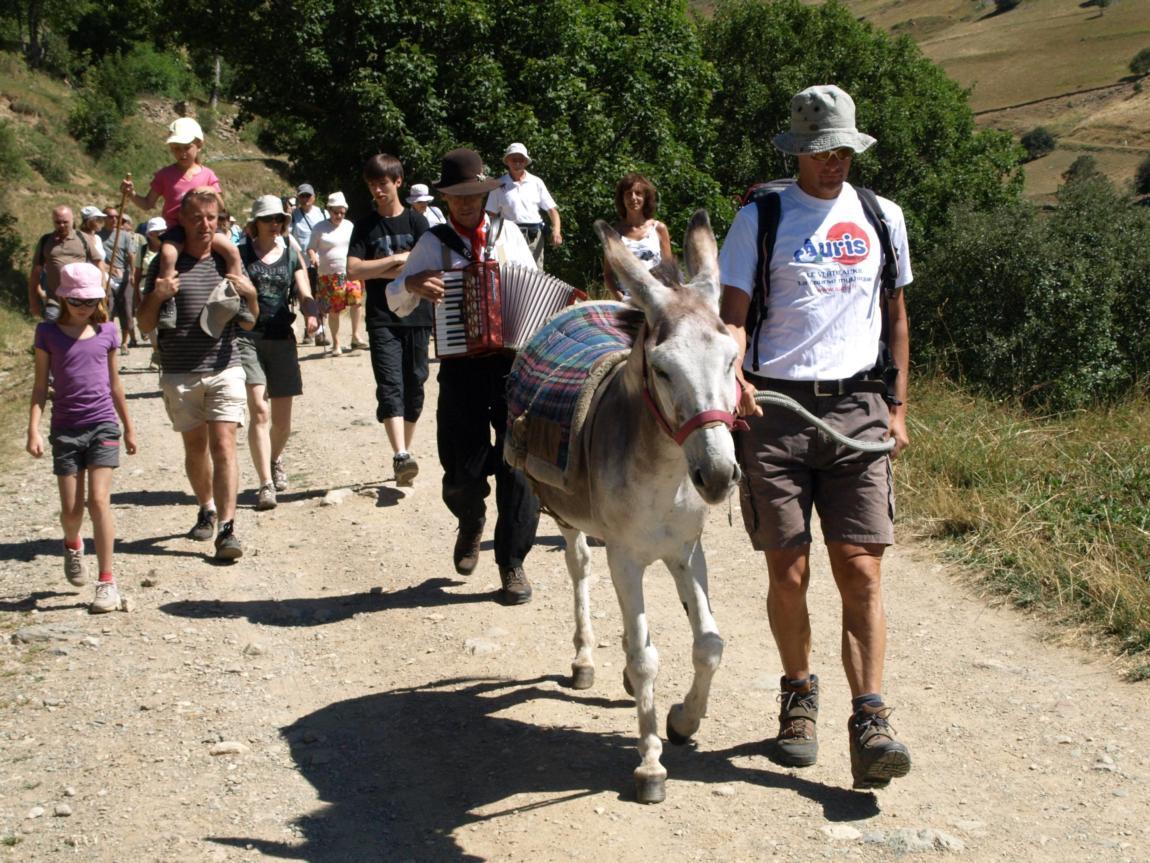 Petite balade à dos d' âne accompagnée