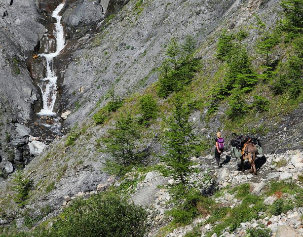 Sur le sentier du refuge, la gardienne accompagnée de son âne Charly