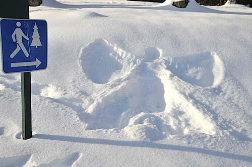Accompagnez un Garde-Moniteur à la recherche des traces de la faune en hiver (4)