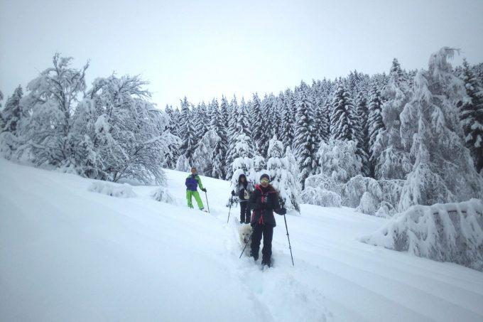 Randonnée raquettes en hiver