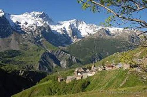 Mongelli Josette – La Gentiane haut (21)