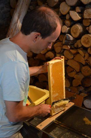 Un écrin de miel