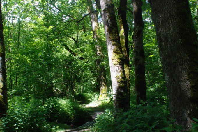 Natura 2000 Plaine de Bourg d'Oisans