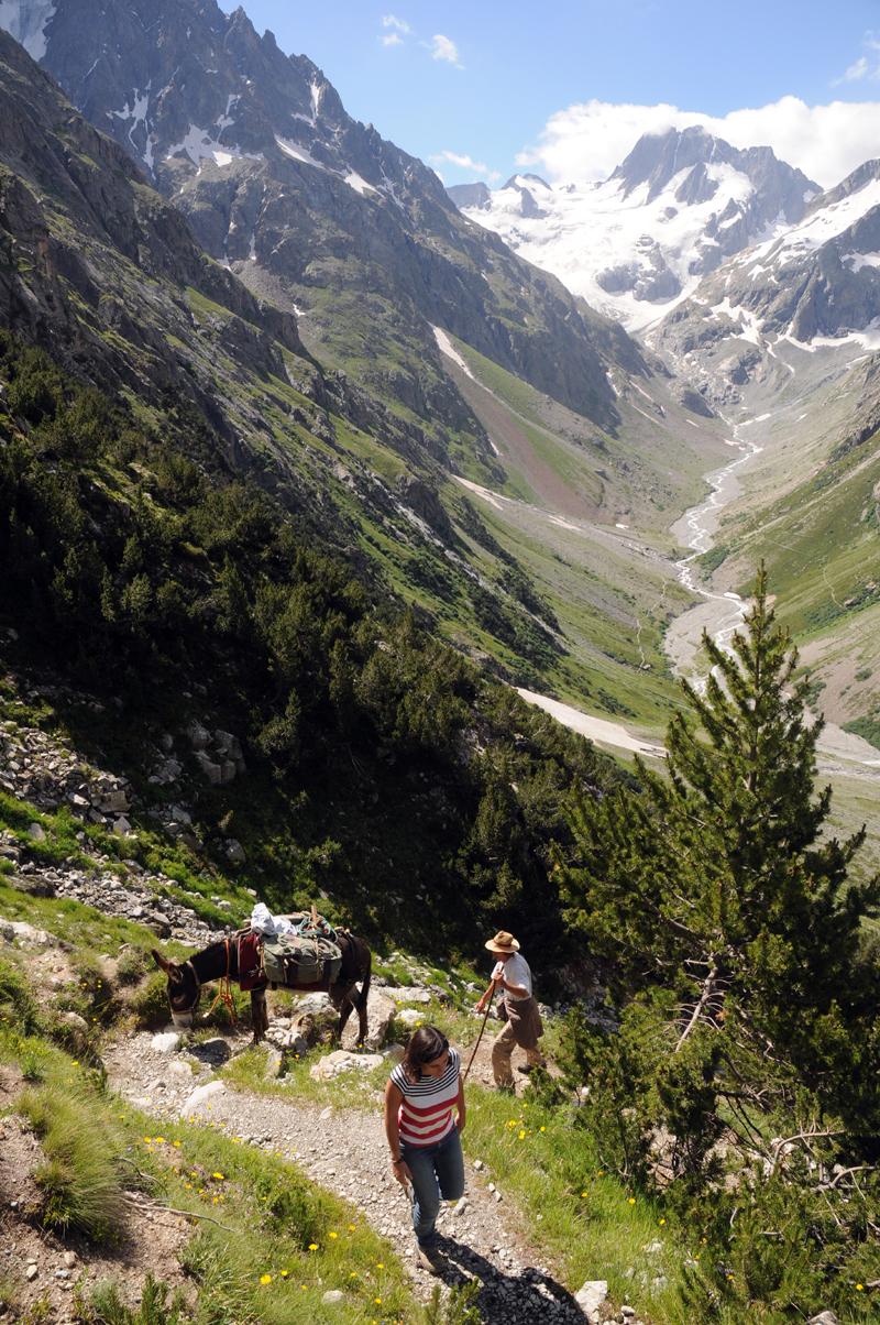 Provenc'ânes : randonnée avec un âne (1)