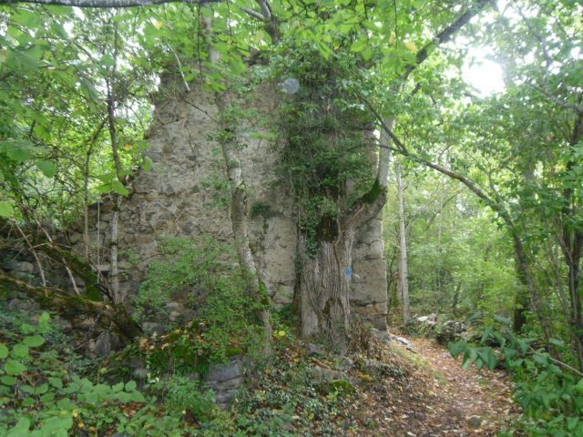ruine du hameau du Ferraret