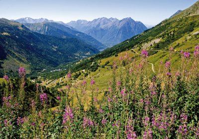 Au col du Sabot (2100 m)