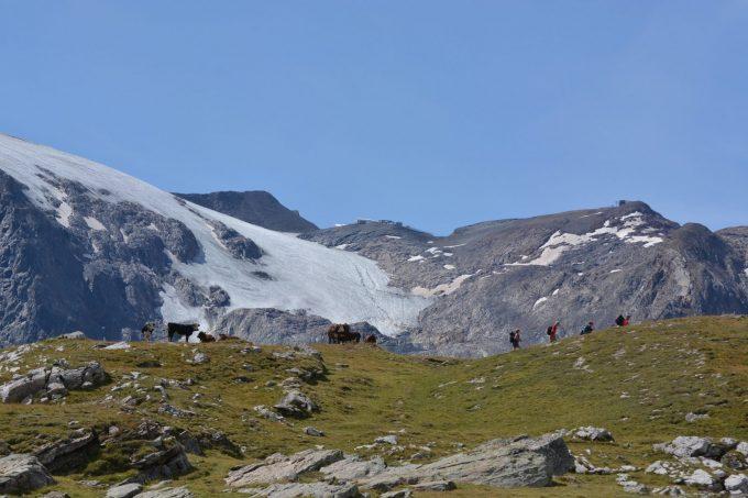 Le plateau d'Emparis face aux glaciers