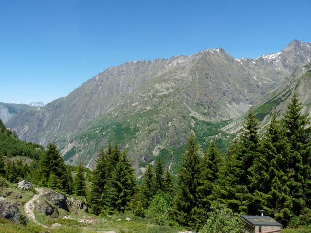 L'alpe du pin